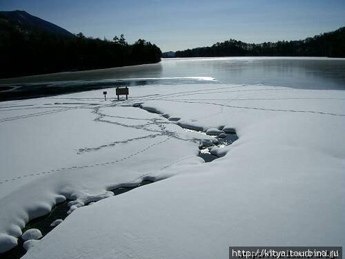 Эта часть озера Юноко (посёлок Никко-Юмото, префектура Тотиги) не замерзает даже при -20 из-за впадающих в него горячих ручьёв.