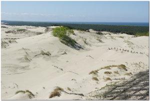 Куршская коса. Песчаные дюны