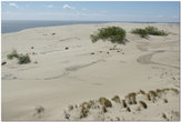 Дюны. Вид на Калининградский залив. Куршская коса