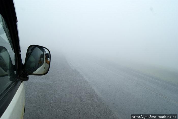 фотографируем дорогу :)