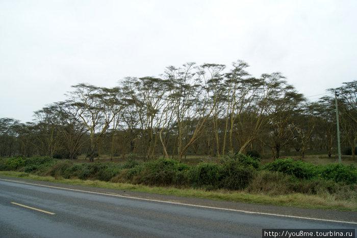 Кения, провинция Рифт-Валли