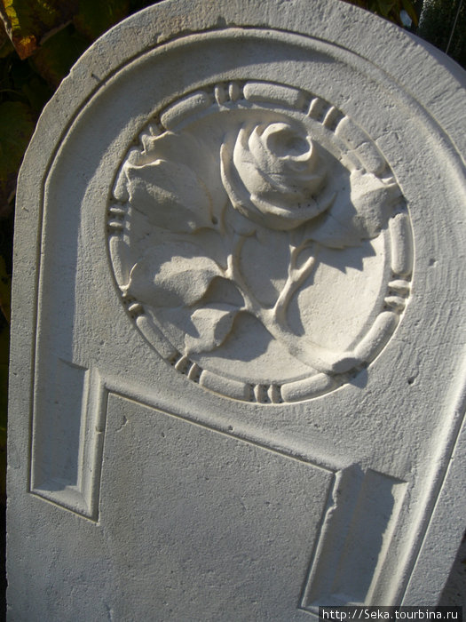 Те самые каменные розы