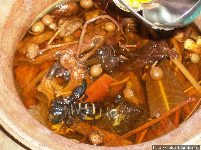 В лавке местного знахаря пьем настойку на скорпионах с ядом–бодрит. Тайцы пьют ее понемногу: 1-2 раза в неделю по 50-100 гр.