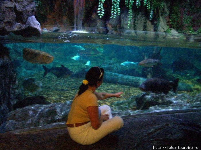 Bangkok.Океанариум. Место, где чувствуешь себя и ребенком (радуешься, удивляешься, восхищаешься одновременно) и частью огромного мира.
