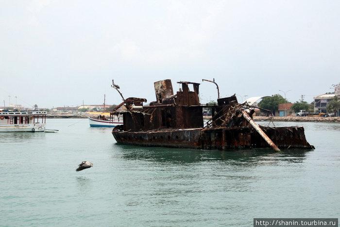 Жертва кораблекрушения