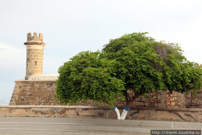 Крепость Сан-Карлос-де-Бороромео в Пампатаре