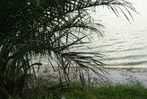 на острове Бугала, озеро Виктория
