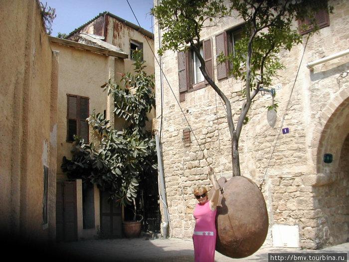 Висящее дерево в Яффо.