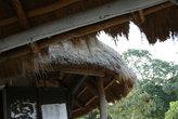 канарейка (?) под крышей