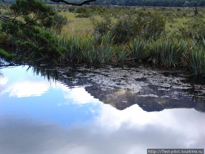 Зеркальное озеро по пути в Милфорд Саунд.  Лучше подъезжать сюда утром, когда тишь и на озере нет ряби. И тоггда оно и в самом деле зеркальное.