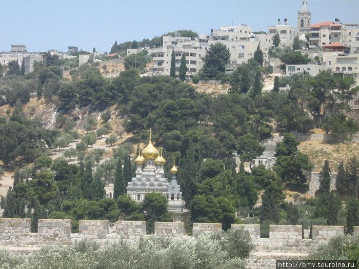 Гефсимандский сад. Православная церковь.