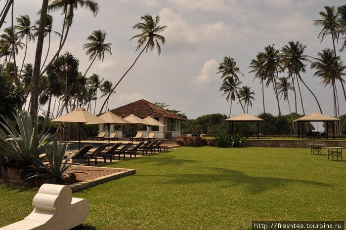 Классический газон во дворе The Villa — под стать персидскому ковру в старинных палаццо. На нем солнце и пальмы устраивают театр теней. Что само по себе — особое действо!