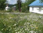 Село Сянки находится, на территории регионального ландшафтного парка «Надсянский», расположенного в горной местности на высоте 650 — 950 метров над уровнем моря в украинско-польской пограничной зоне.