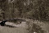 Разрушившийся мостик через пересохший канал в заброшенном парке...