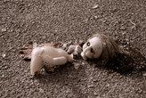 Самое тяжелое зрелище в Припяти — это куклы.