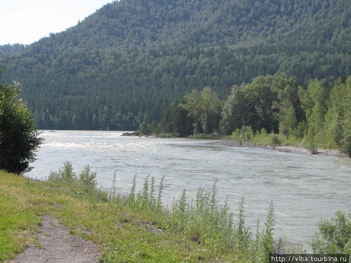 Река Катунь. На первый взгляд довольно спокойна, но стоит только ступить в нее!!!