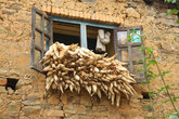 Кукурузу сушат на окнах домов