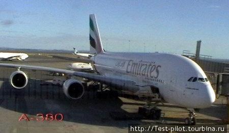 А 7 марта мы мы на самом большом в мире А-380 вылетели из Окленда в Дубаи, где сделали пересадку с тем, чтобы в качестве подарка прилететь 8 марта в Москву.