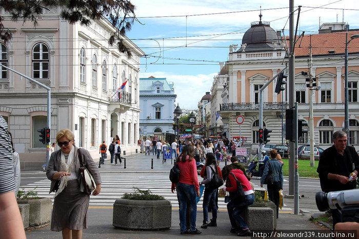 Белград или Санкт-Петербу