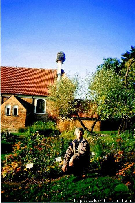 За собором расположен аптекарский сад.
