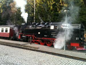 Brockenbahn — единственный вид транспорта, которым можно пользоваться в Гарце. Въезд в национальный парк на машинах запрещен, а вот на поезде можно подняться на самую вершину Гарца.