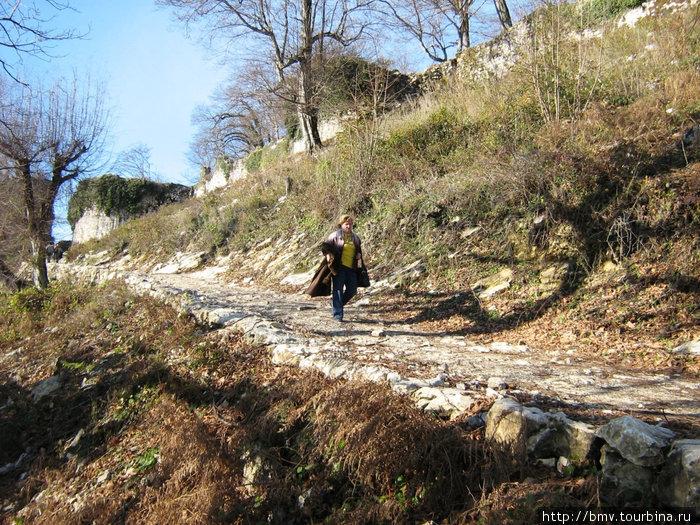 Дорога на Иверийскую гору