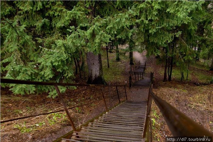 От места, где стоял усадебный дом Лидино к ручью Пёсьему