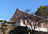 В замке Инуяма