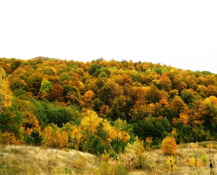Осень в горах.