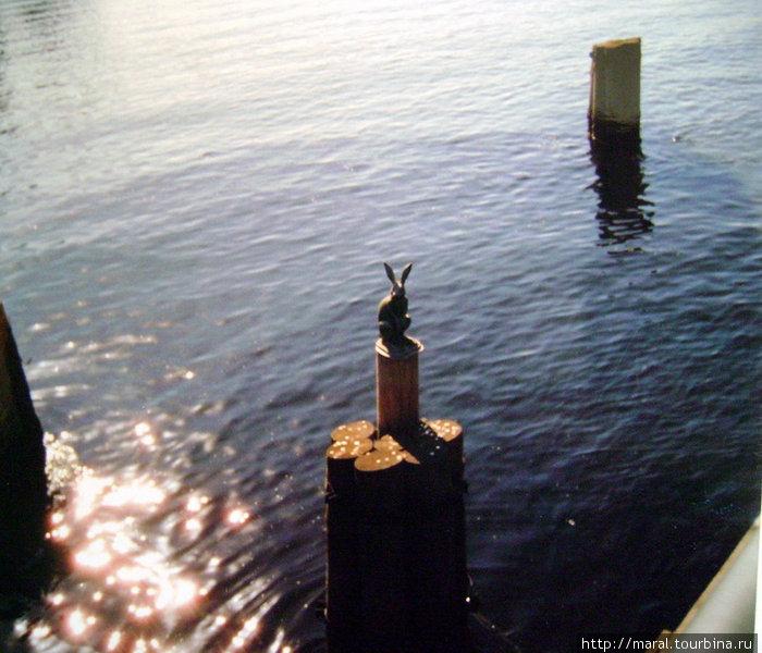 Фигурка Зайца при входе в Петропавловскую крепость по Иоанновскому мосту – питерская достопримечательность