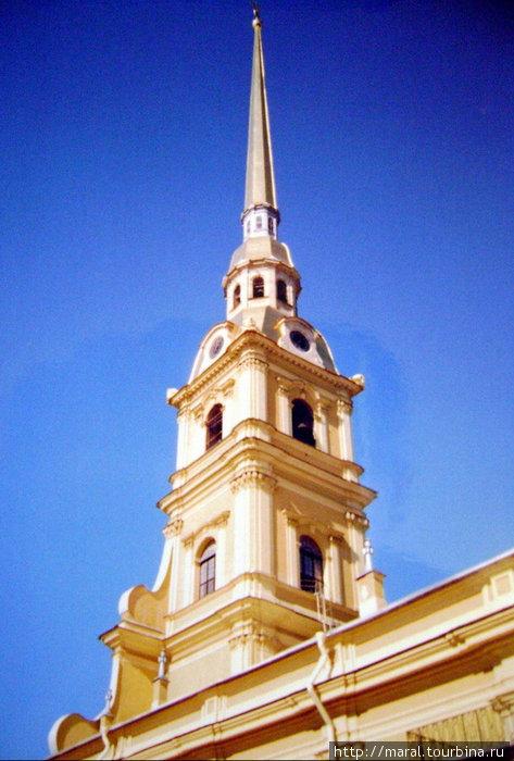 Колокольня Петропавловского собора высотой 122,5 м, увенчанная золочёным шпилем с фигурой летящего ангела, является высотной доминантой города, ангел на шпиле — исторический символ города