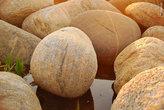 Камни похожи на яйца