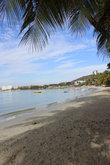 Пляж с песочком и пальмами