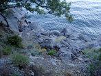 Голубой залив на рассвете