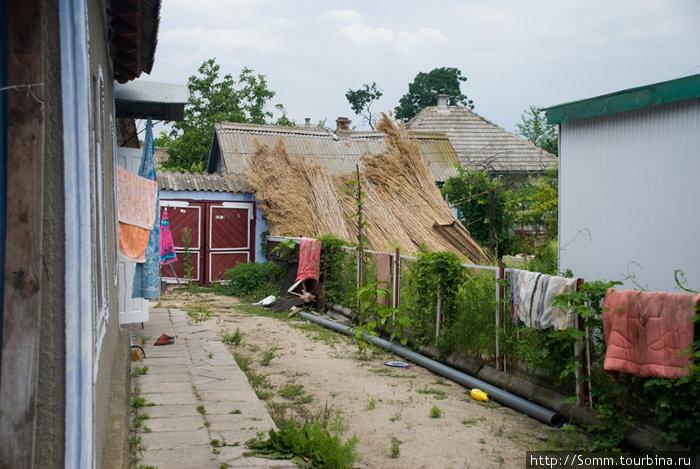 Во дворах жители сушат дунайский тростник