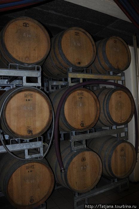 здесь  виноградный сок превращается в вино