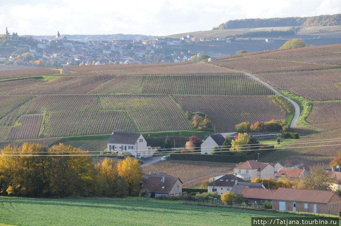 Виноградная Провинция города Ерпене