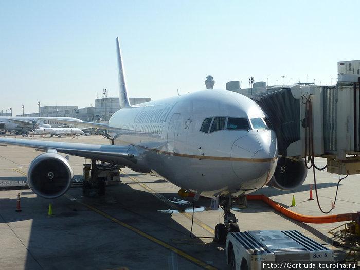 Снимок через окно терминала —