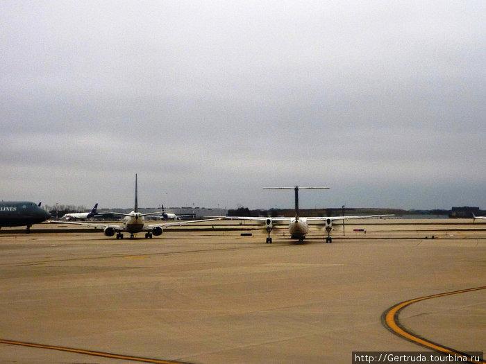 Два самолета выруливают на взлет, напоминает танец стрекоз.