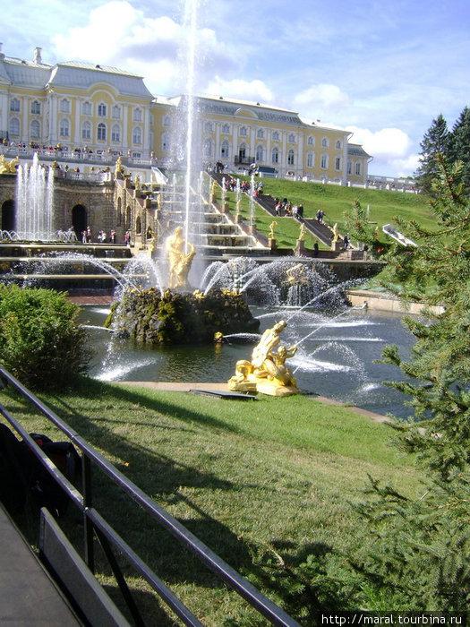Большой каскад состоит из трёх лестничных каскадов с 17 водопадными ступенями и грота. Его украшают 37 статуй, 29 барельефов и более 150 декоративных фигур, 64 фонтана выбрасывают 142 струи воды
