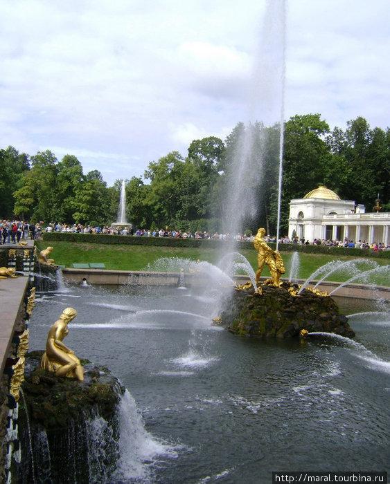 Знаменитый «Самсон» (скулп. Ф.К. Расстрелли) — центральная фигура Большого каскада в Петергофе. Установлен в 1735 году в ознаменование 25-летия победы русской армии над шведами под Полтавой