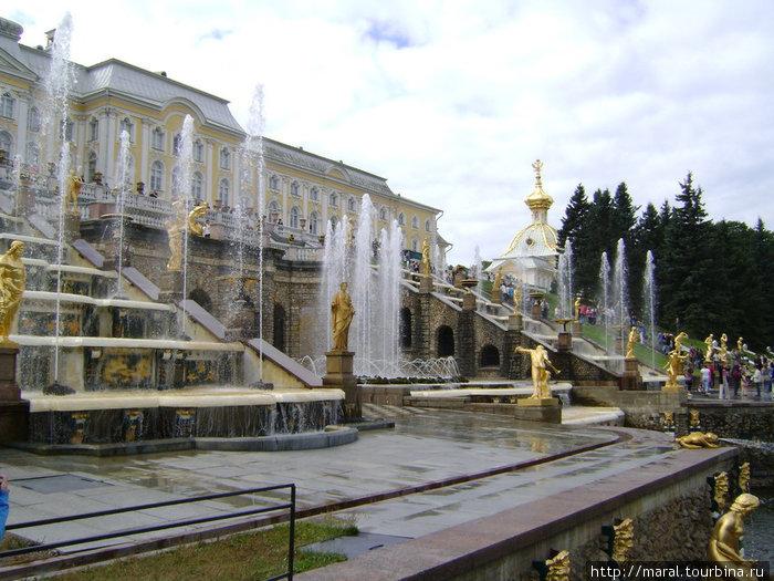 15 августа 1723 года состоялся торжественный пуск фонтанов Большого каскада — это памятное событие ежегодно отмечается в Петергофе как традиционный праздник фонтанов
