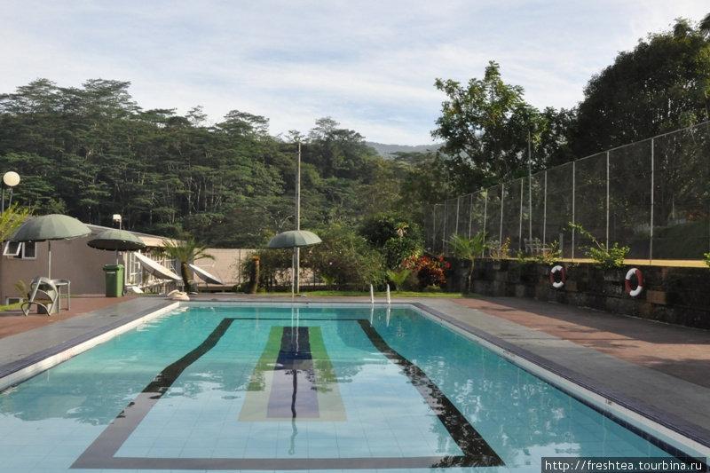 По утрам здесь свежо (все-таки 500 м над ур. моря), но к полудню воздух прогревается до + 26. Так что бассейн после прогулки или экскурсии в Канди очень кстати.