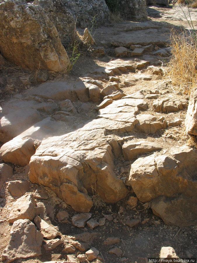 каменистые тропы