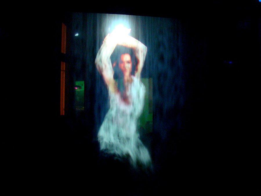 понравилась эта фишка — перед входом в зал, дымовая завеса и на ней проецируются различные вещи (танцующие девушки, танцоры, скелеты и т.д), люди проходят сквозь эти изображения