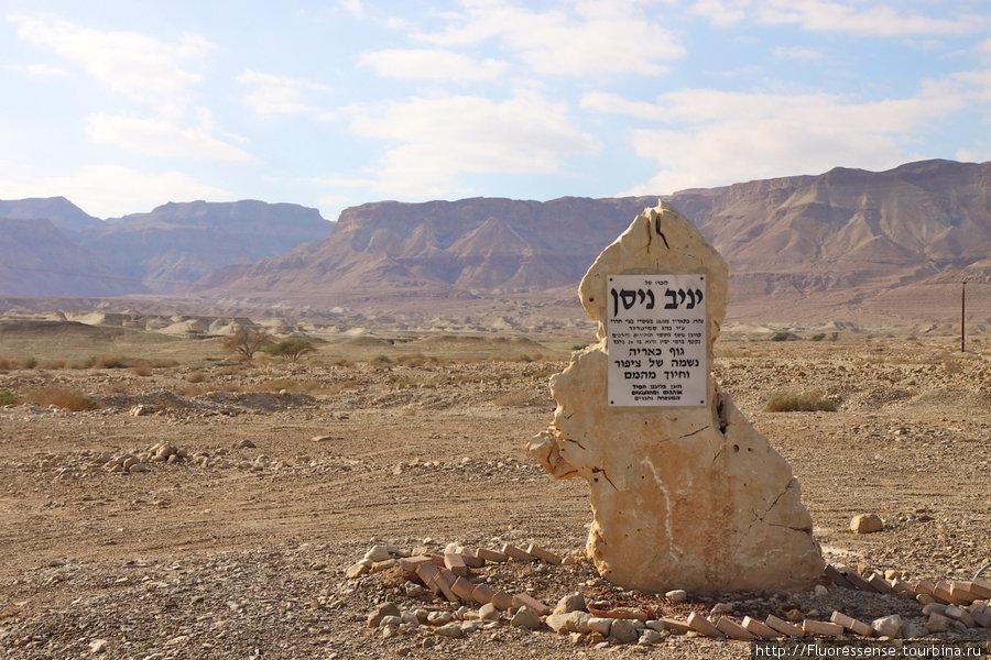 Мемориальная доска в пустыне на побережье Мертвого моря. На редкость креативная, на мой взгляд. Сделана из куска так распространенного здесь желтого известняка.