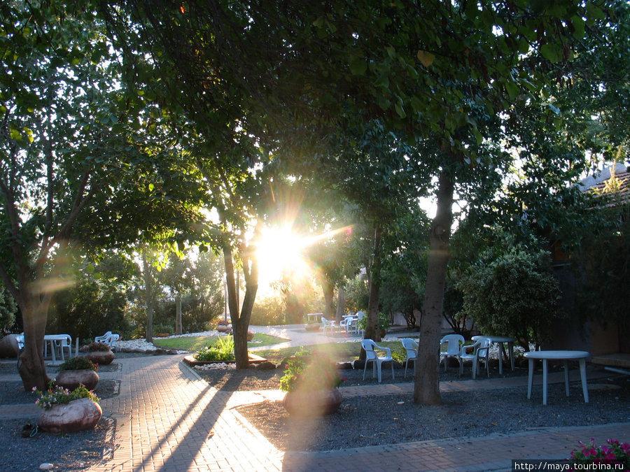 Утро в Афике