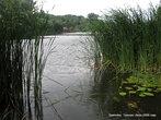 Тальянка запружена. Образовалось живописное озеро. На другом берегу — зона отдыха.