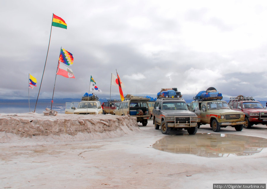 Цветочная клумба Уюни, Боливия