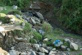речка, текущая с гор